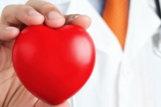 Photo: Doctor in white lab coat holding a red toy heart